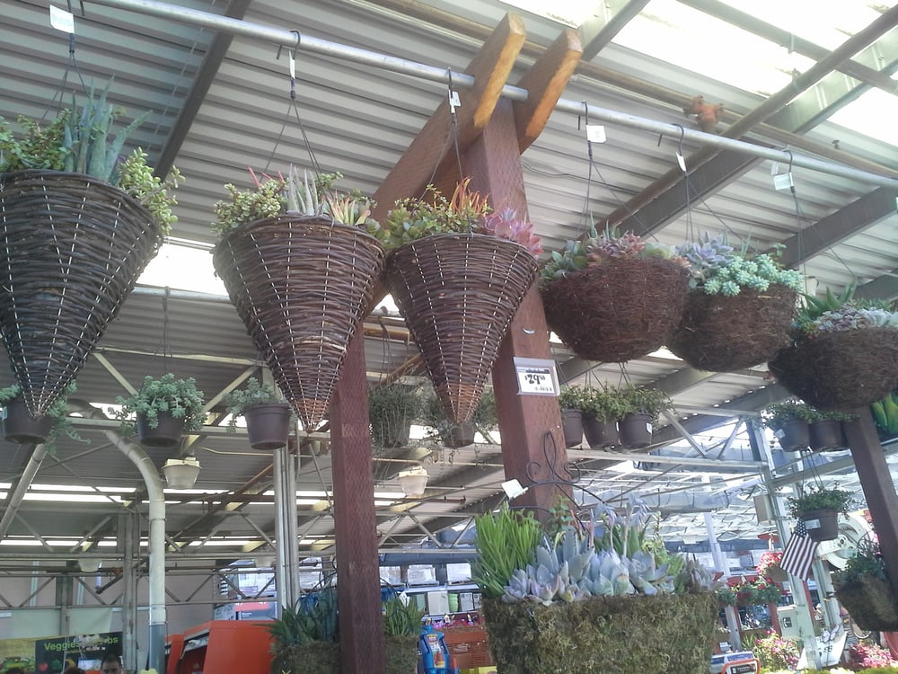 The Home Depot Garden Center Oakland Ca Yelp