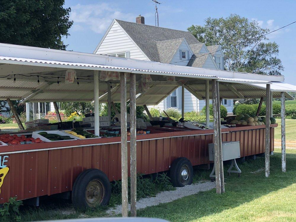 Jasper's Farm Stand: W Marquette Woods Rd, MI, MI