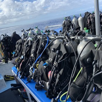 Kona Diving Company >> Kona Diving Company 98 Photos 222 Reviews Diving 74 5615