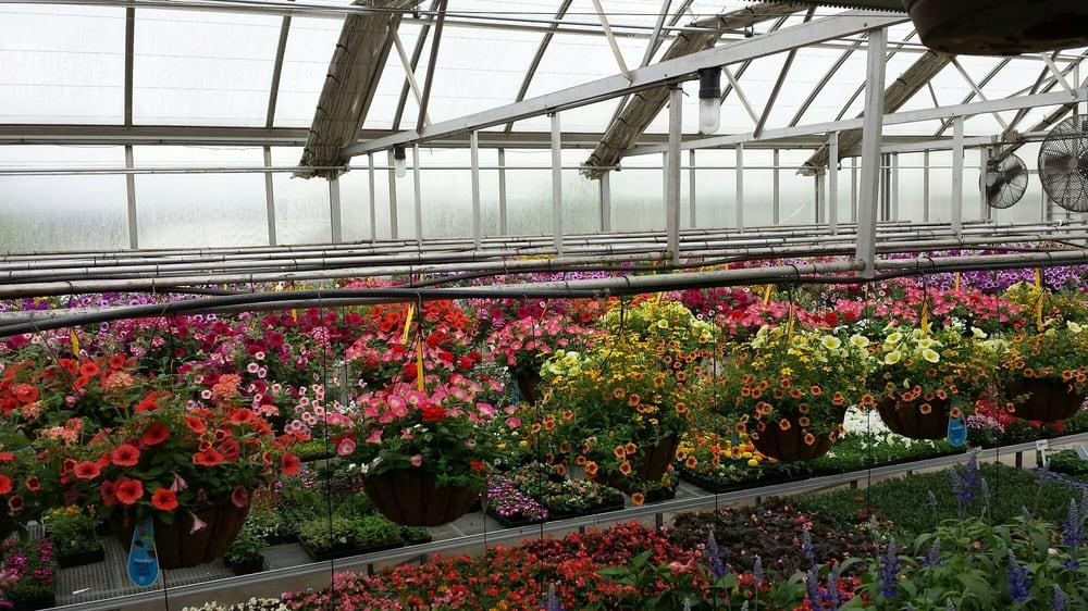 Levengood's Flowers: 7652 Boyertown Pike, Douglassville, PA