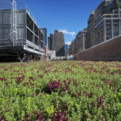 Greensulate Roofing 154 Grand St Soho New York Ny