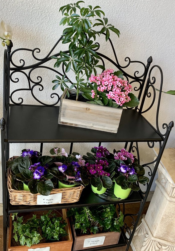 Cattails Florist: 9000 Crow Canyon Rd, Danville, CA