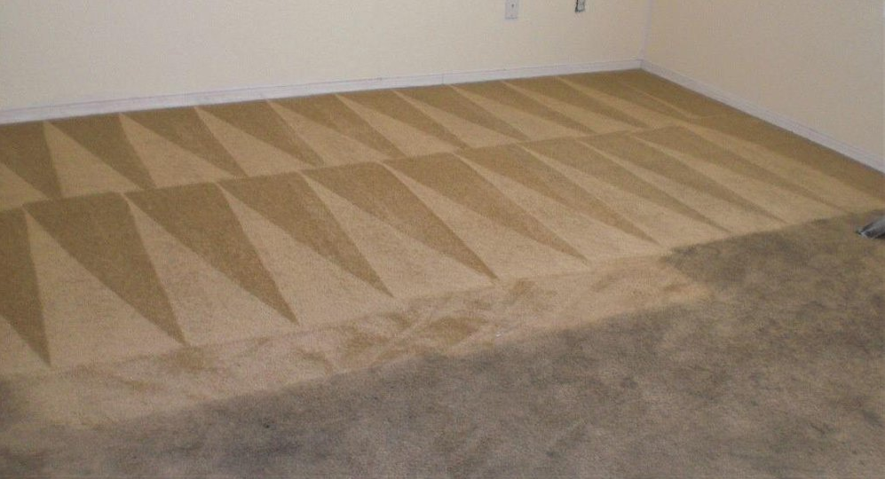 Omni Carpet Cleaning