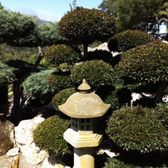 san luis obispo buddhist singles 5 reviews of san luis obispo buddhist church after coming to this temple for about 8 years for buddhist retreats, it is a great place for a religious getaway the temple is surrounded by many trees and nice scenery.