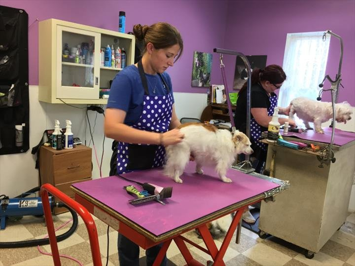 Char's Grooming Post: 101 E 11th St, Marseilles, IL