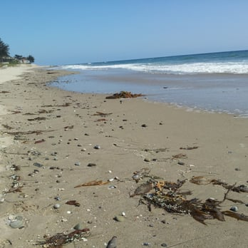 Photo Of Rincon Beach Park Carpinteria Ca United States Seashells By The