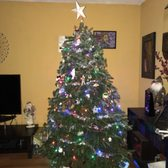 photo of green valley christmas trees mountain view ca united states