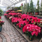 country mile gardens - Mendham Garden Center