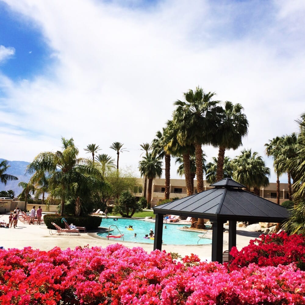 photos for miracle springs resort & spa - yelp