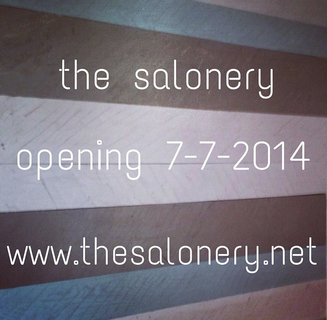 The Salonery: 3095 State Rd 39, Mineral Point, WI