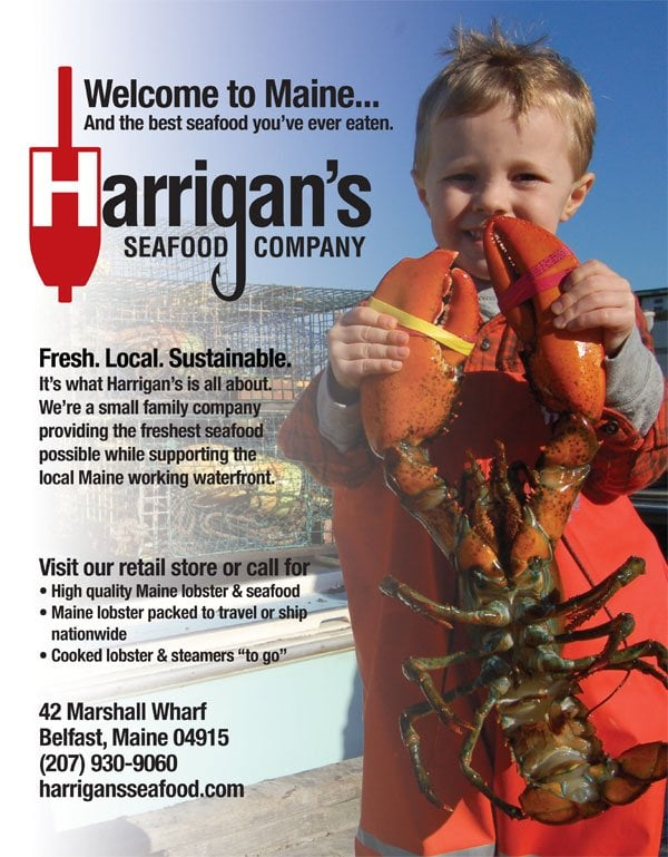 Harrigan's Seafood Company: 42 Marshall Wharf, Belfast, ME