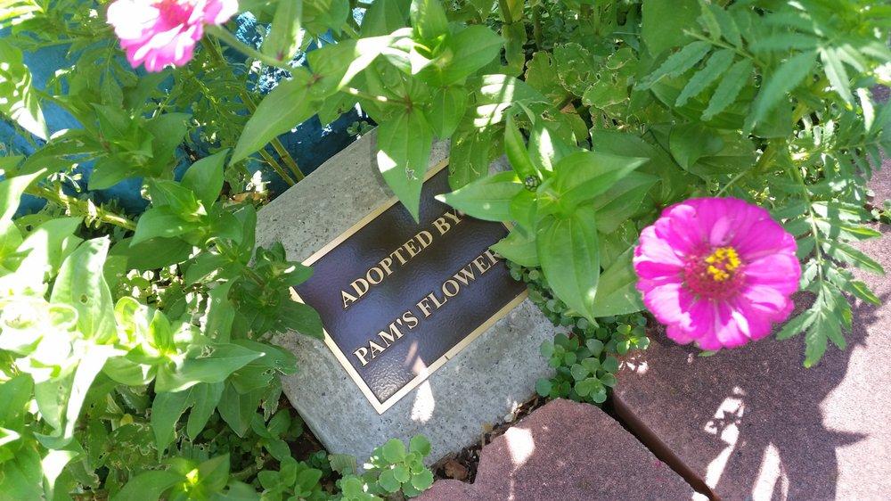 Pam's Flowers: 219 Plz, Las Vegas, NM