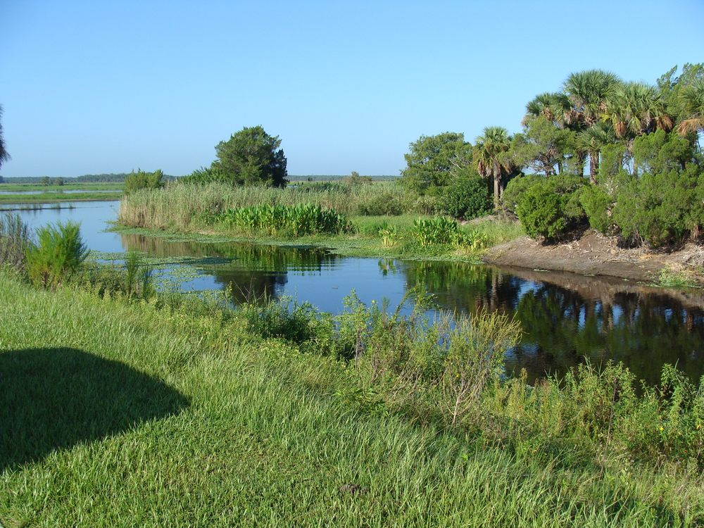 Ray's Airboat Rides: 28500 E Colonial Dr, Christmas, FL