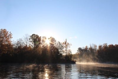 Bay Springs Marina: 48 County Rd 3495, New Site, MS