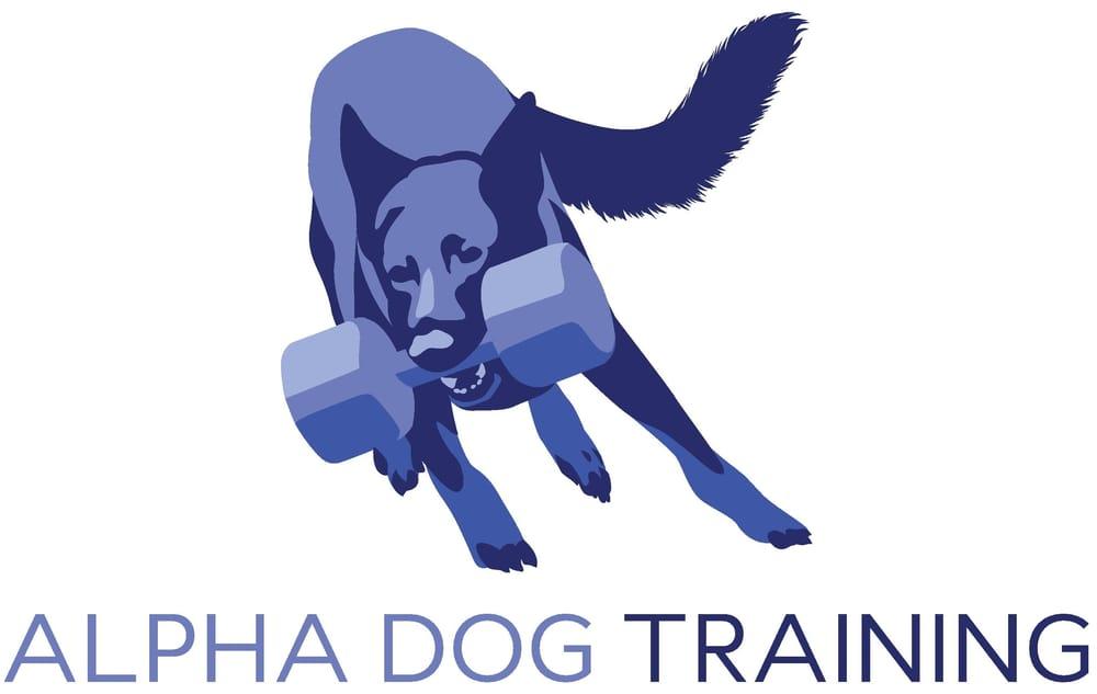 Yelp Alpha Dog Training