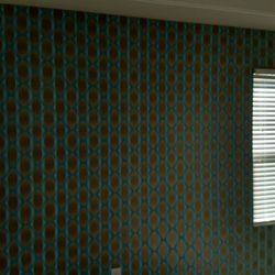 Photo of James O'Brien Wallpaper - Raleigh, NC, United States