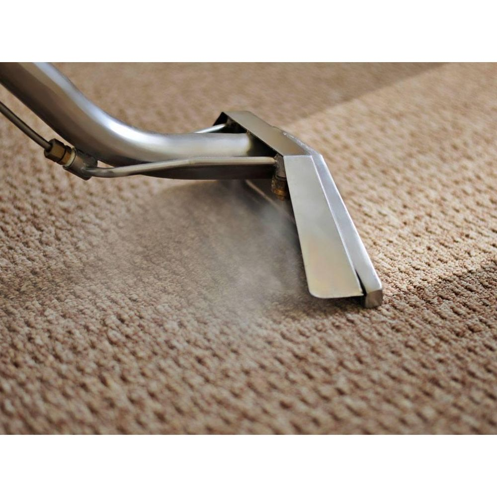 North of the Bay Carpet Care