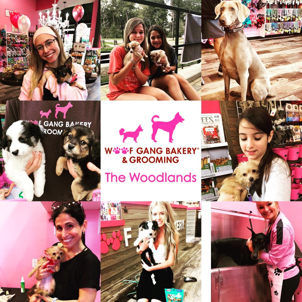 Woof Gang Bakery & Grooming - The Woodlands