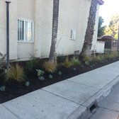 Perfect Photo Of Xeristyle Exterior Design   Fullerton, CA, United States. Replaced  Sidewalk Grass