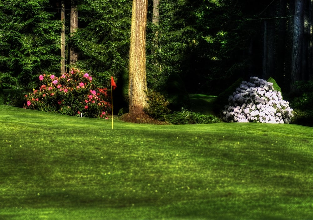 Riviera Golf Course: 11016 Country Club Dr, Anderson Island, WA
