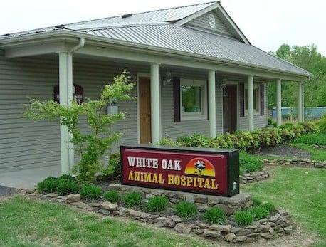 White Oak Animal Hospital: 1341 Fairview Blvd, Fairview, TN