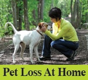 Pet Loss At Home - Home Euthanasia Vets: Milwaukee, WI