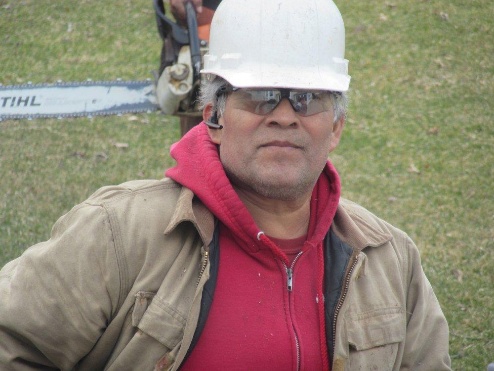 Castro's Tree Service: 3303 US 20, Elgin, IL
