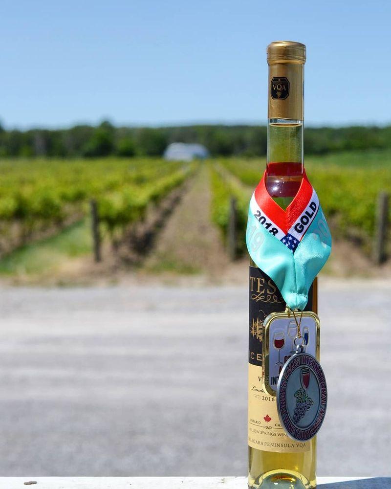 Willow Springs Winery & Vineyard