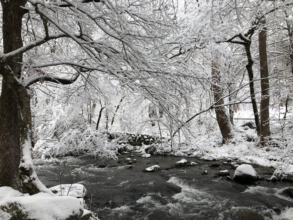 Tree Tops Resort Of Gatlinburg - Slideshow Image 1