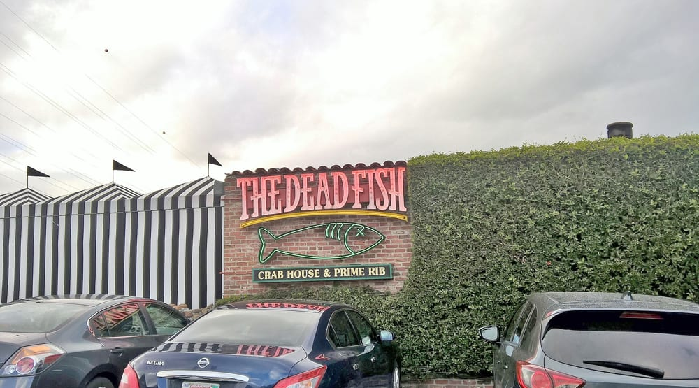 The Dead Fish Yelp