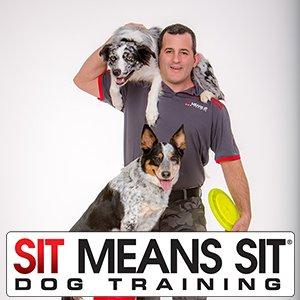 Sit Means Sit Dog Training: Stamford, NY