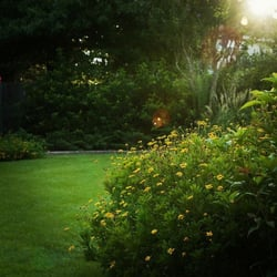 Superb Photo Of Stewart Lawn U0026 Garden   Tomball, TX, United States