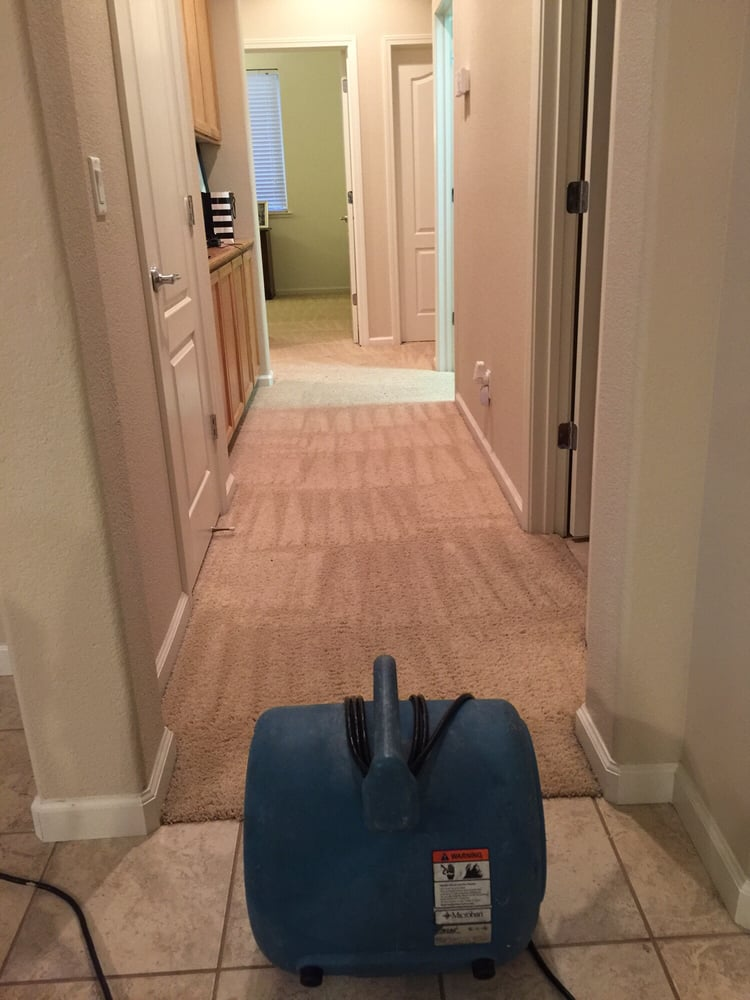 Eagle Carpet Care 19 Photos Carpet Cleaning Lincoln