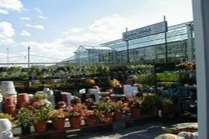 Garden World: 500 Franklin Ave, Franklin Square, NY