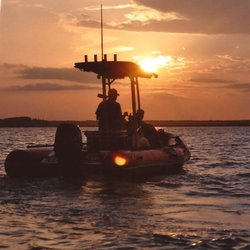 Photo Of Dolphin Nature Tour Hilton Head Island Sc United States
