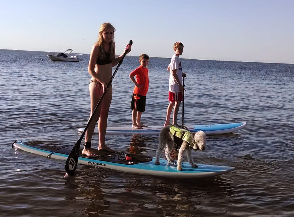 South End Surf 'N Paddle: 220 S Bay Ave, Beach Haven, NJ