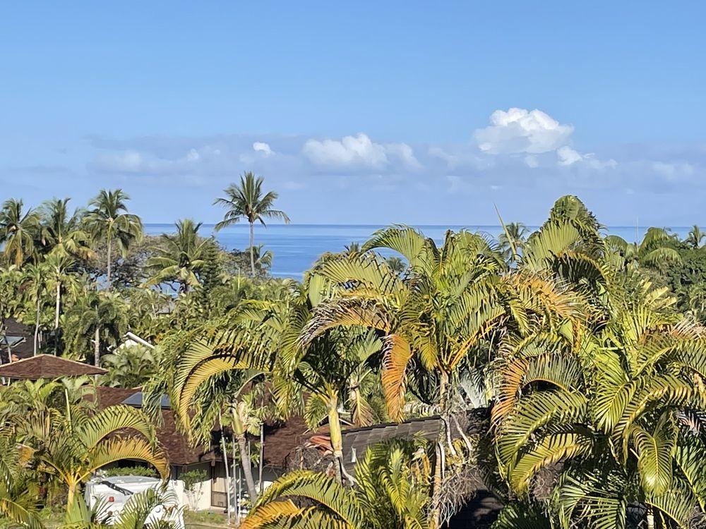 The Palms At Wailea: 3200 Wailea Alanui Dr, Kihei, HI