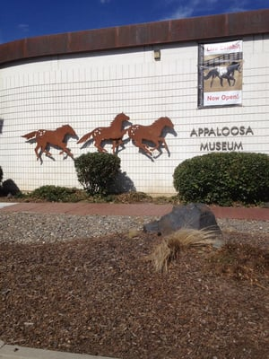 Appaloosa Horse Club 2720 W Pullman Rd Moscow, ID Museums