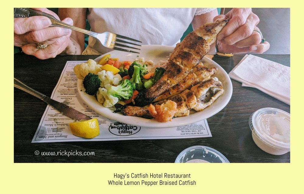 Hagy's Catfish Hotel: 1140 Hagy Ln, Shiloh, TN