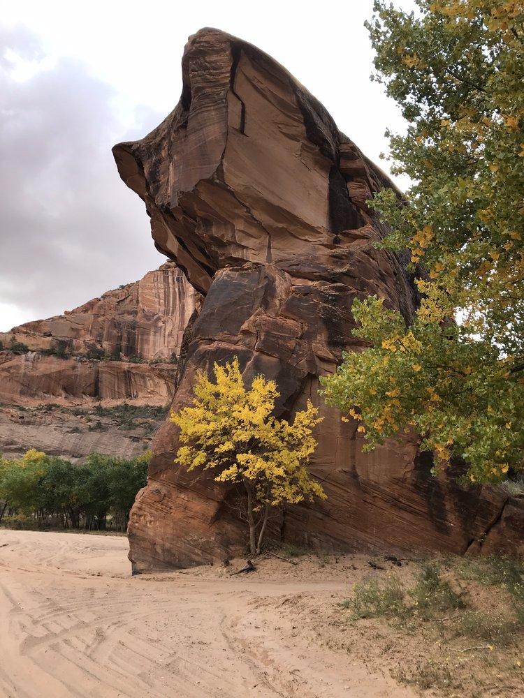 Beauty Way Jeep Tours: Chinle, AZ