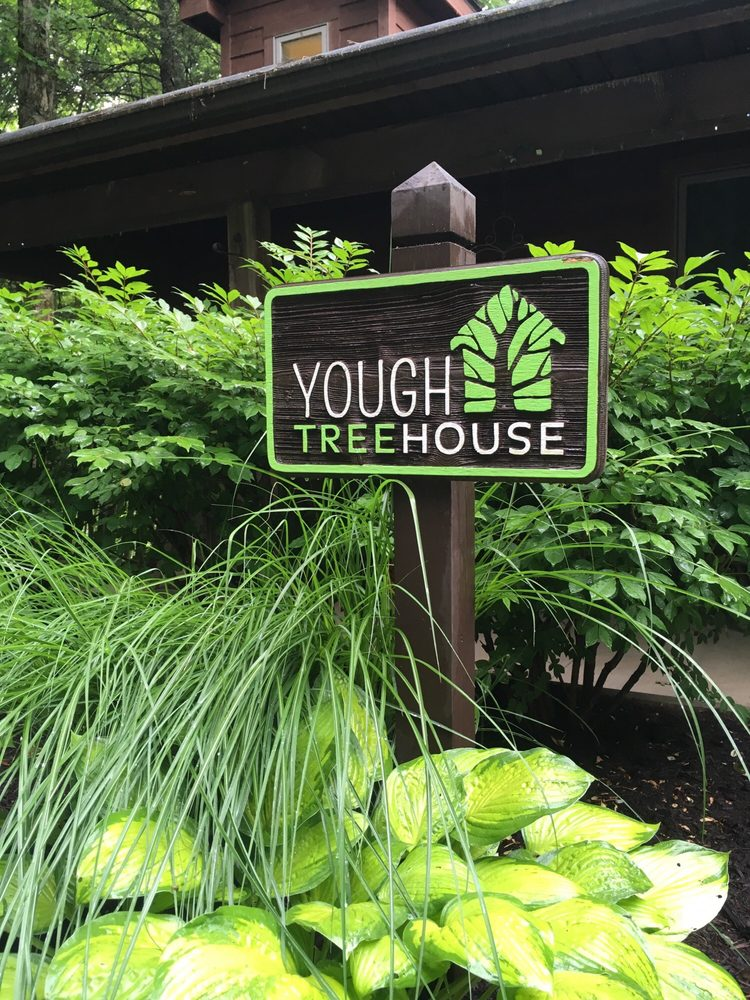 Yough Treehouse: 926 River Rd, Confluence, PA