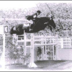 Horseback Riding In San Antonio Yelp