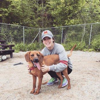Dog Training Centennial