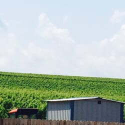Photo of Ravines Wine Cellars - Geneva NY United States & Ravines Wine Cellars - 83 Photos u0026 56 Reviews - Wineries - 400 ...