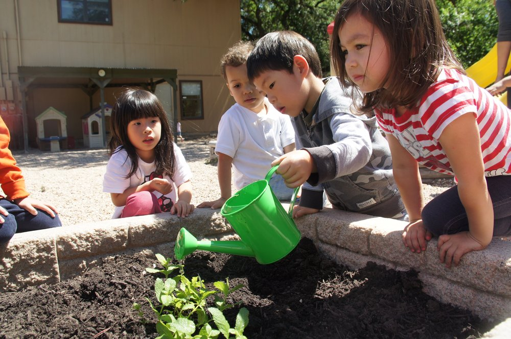 Jordan International Montessori School: 10713 N Fm 620, Austin, TX