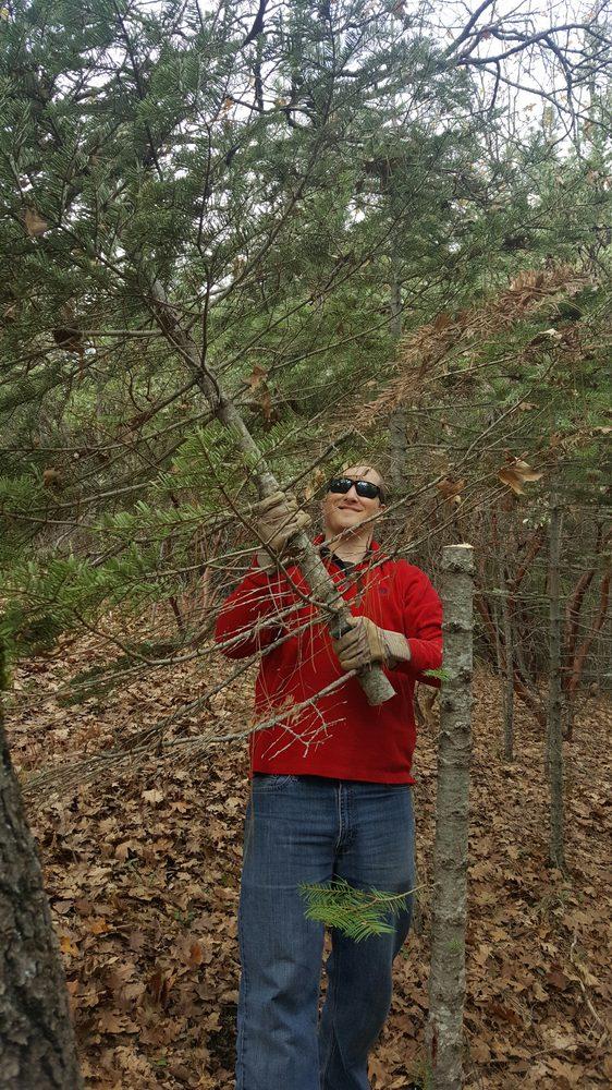 Cedar Ravine Tree Farm: 5240 Cedar Ravine Rd, Placerville, CA