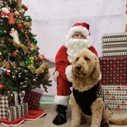 Petsmart Christmas Eve Hours.Petsmart 27 Photos 31 Reviews Pet Stores 501 Hilltop Plaza