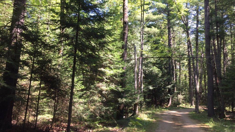 Three Eagle Trail: Three Lakes, WI