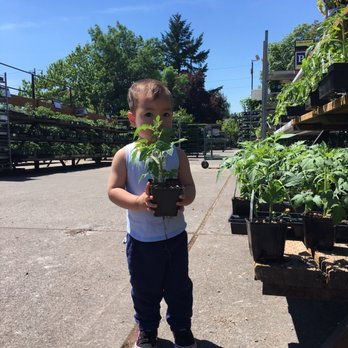 Photo Of Portland Nursery Or United States Excellent Choice
