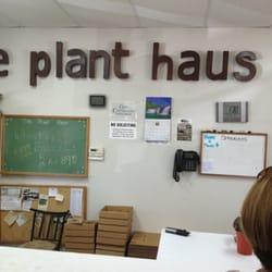Plant Haus the logo